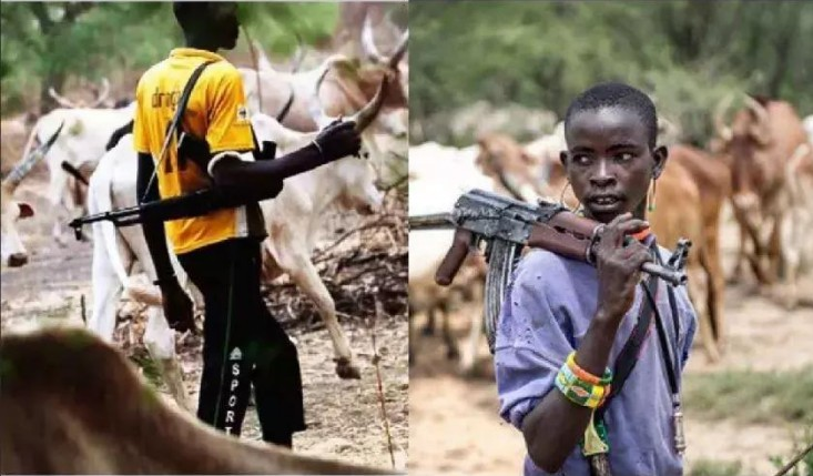 Truth about the 'Killings' at Benin-Ore road by herdsmen over the weekend